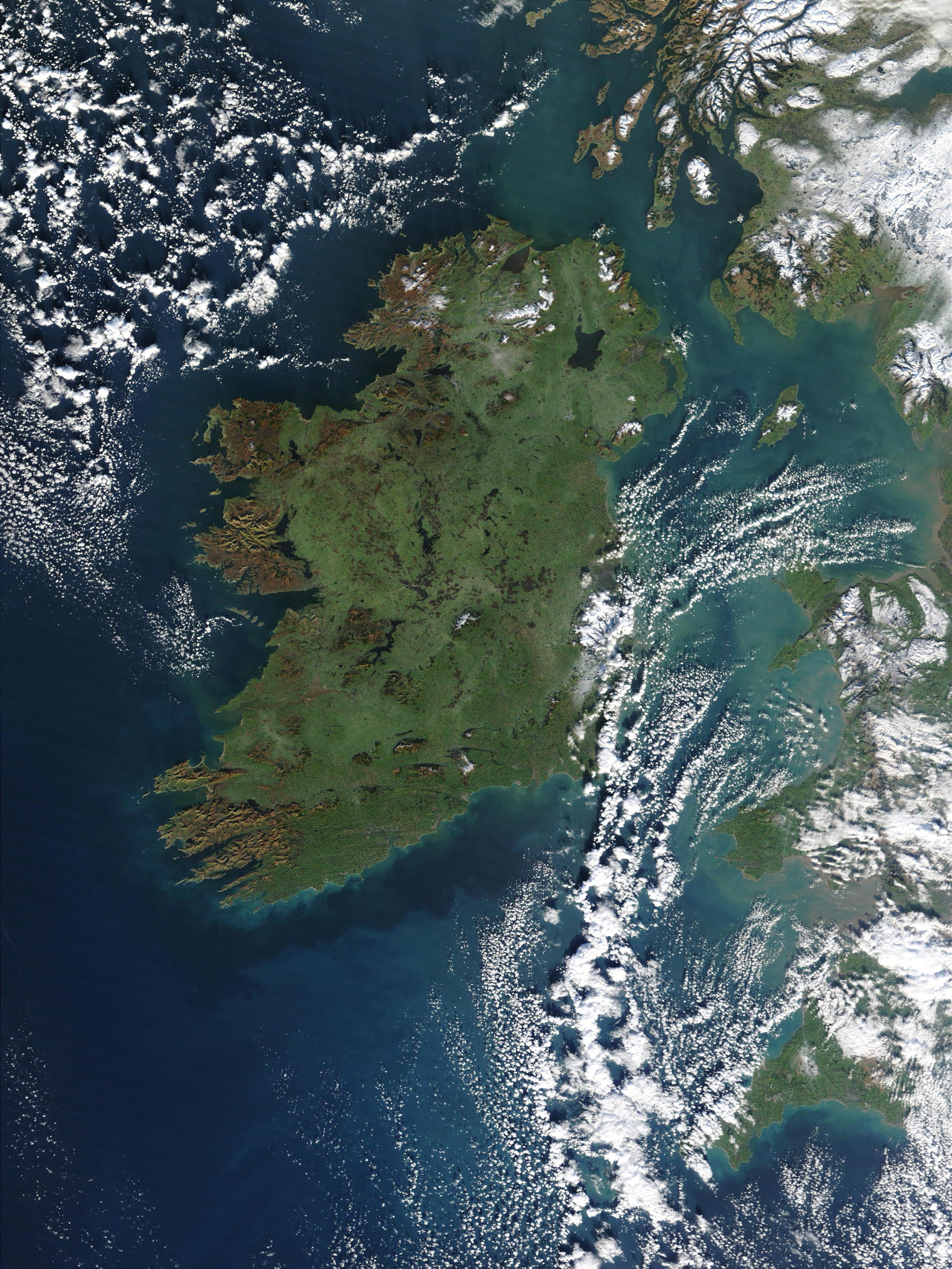 Irish Online